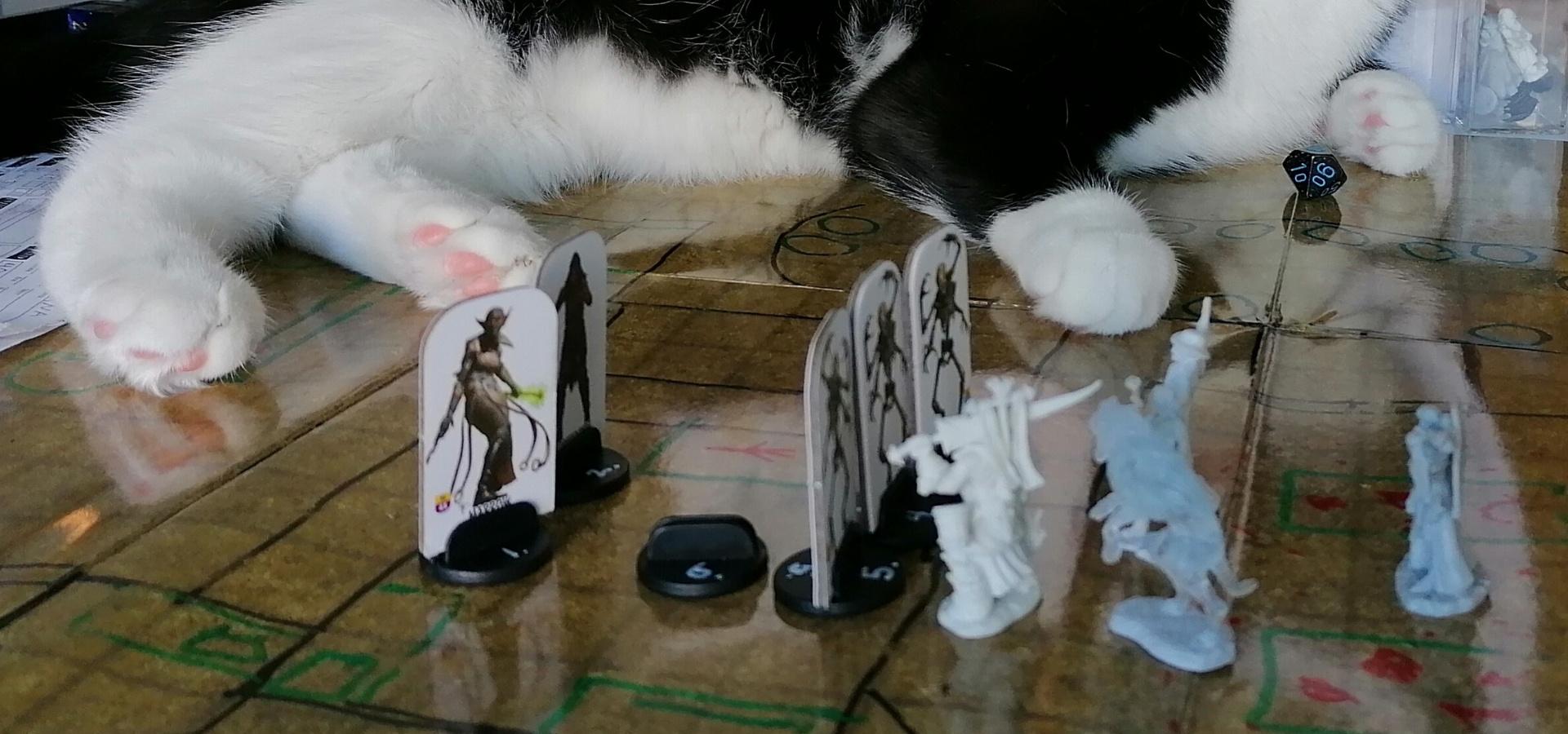 Pöytäroolipeli on käynnissä ja taistelu alkamassa. Esillä on kartta ja figuureja kuvaamassa taustelutilannetta. Taustalla näkyy kissa pelipöydällä.